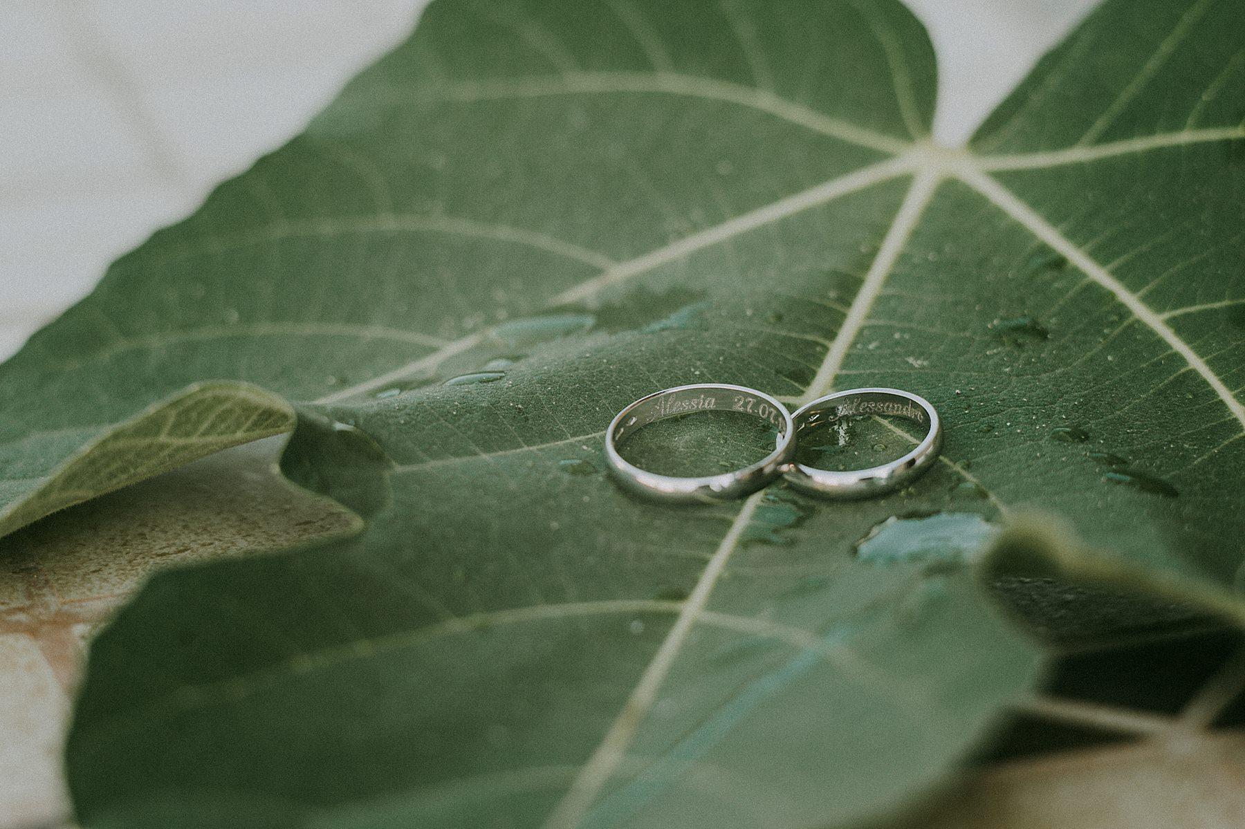 Fedi nuziali, anelli di matrimonio su foglia