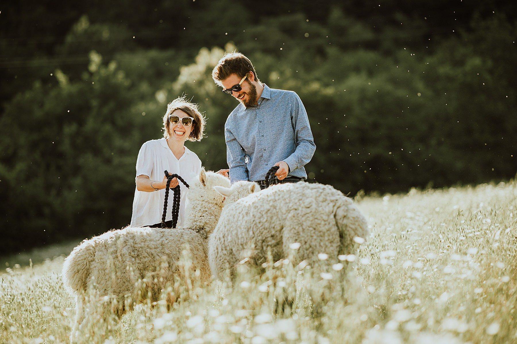 servizio fotografico di coppia romantico con gli alpaca